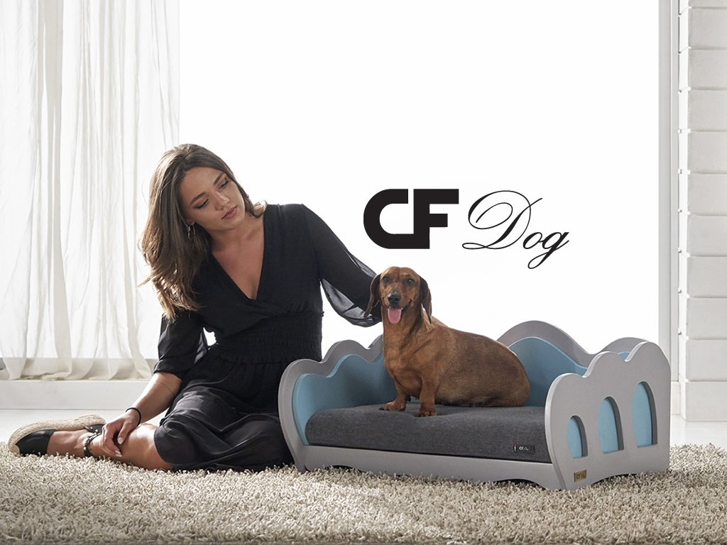 cf dog web design